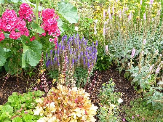 Bearwood Lodge Guest House: Dawn's Garden