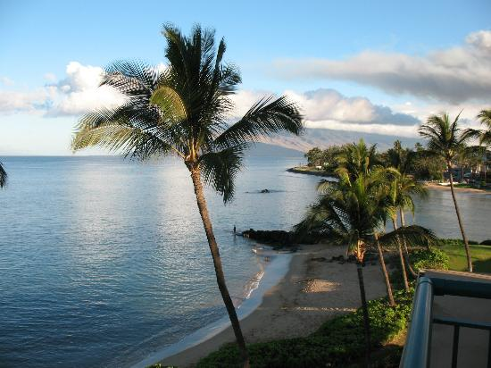 Punahoa Beach Apartments: From our balcony of Unit 403 our own paradise.