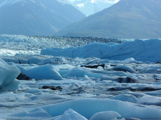 Knik Glacier Tours: Knik Glacier