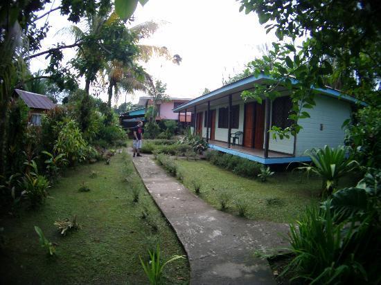 Cabinas Tortuguero: Vista desde la entrada