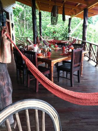 Dolphin Bay Hideaway : Veranda dining area/lounge with ocean & garden view