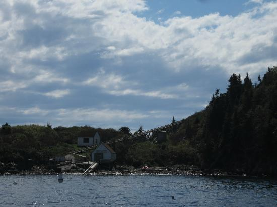 Seguin Island and Lighthouse: Seguin Island