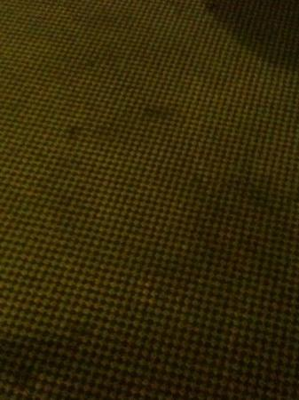 Red Roof Inn Amarillo West: nasty carpet, 80% looks like this or worse!!!!