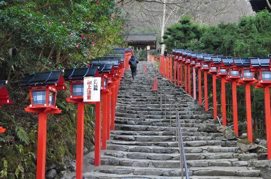 御神木の桂 - Picture of Kifune Shrine, Kyoto - TripAdvisor