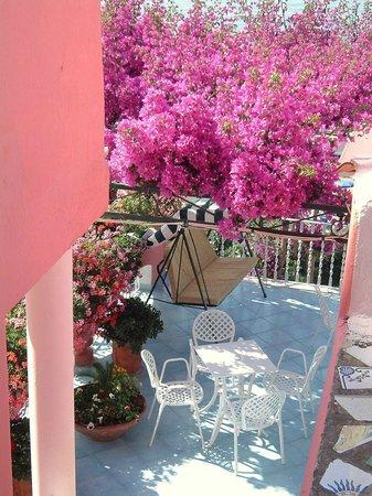 Hotel Casa Rosa: Terrazza sul mare