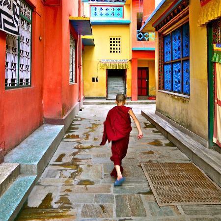 Shechen Guest House : Monk Skipping