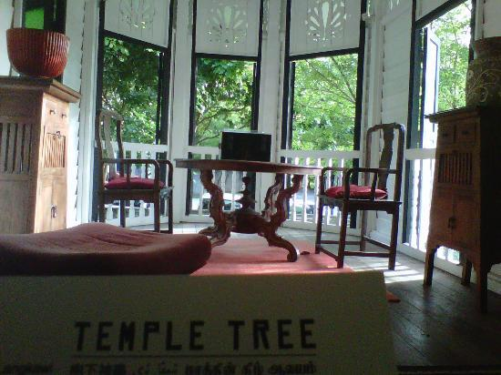 Temple Tree at Bon Ton: Dining Area