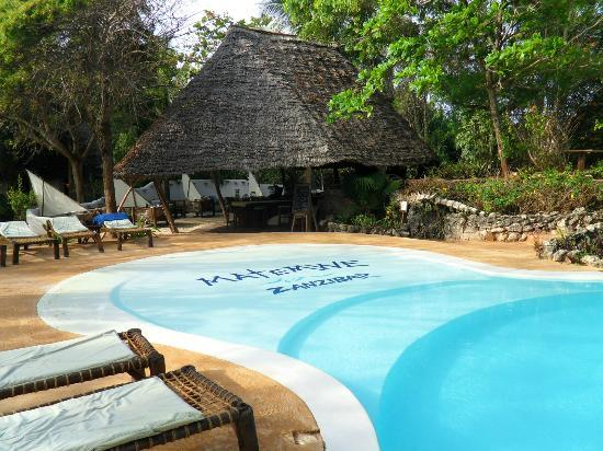 Matemwe Lodge, Asilia Africa: view from pool area