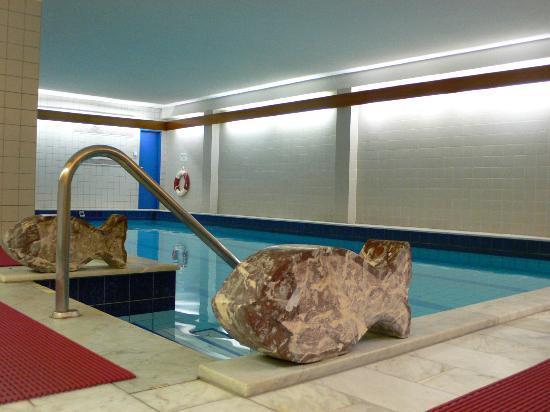 Hotel Meran : Hallenbad mit Gegenstromanlage