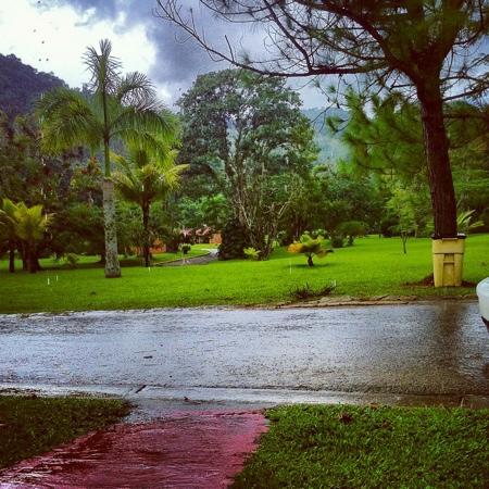 Parador Villas Sotomayor: Áreas verdes