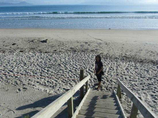 Camp Waipu Cove: Beach