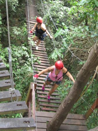 Ecoquest Adventures & Tours: suspension bridge
