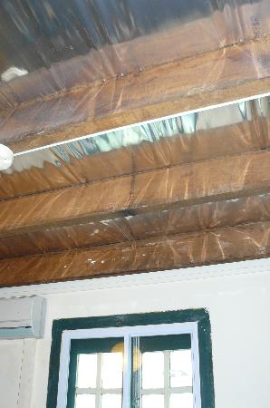 Prince of Wales Backpacker - Boat Quay: Foil ceiling & no curtain