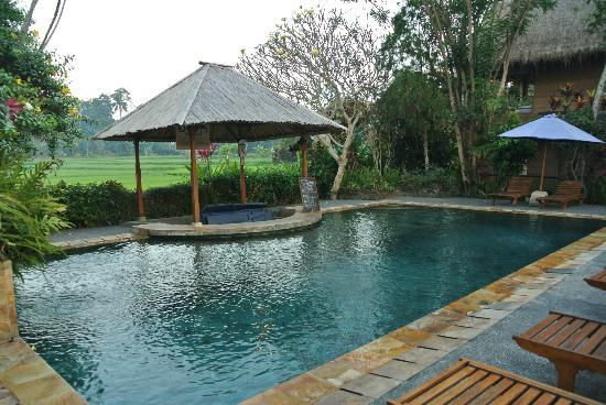 Tegal Sari: the swimming pool