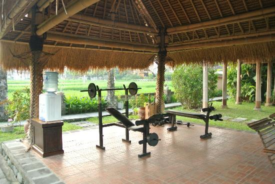 เตกัล ซาริ: gym