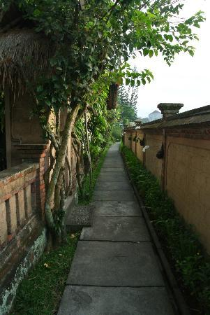 Tegal Sari: walkway to the room