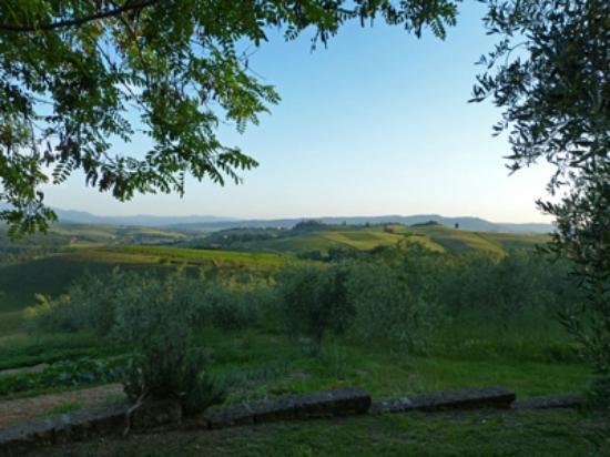 Agrituristica La Canonica: Blick von der Terrasse