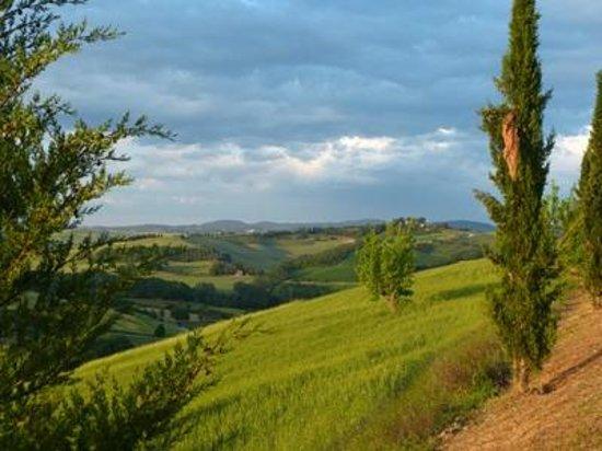 Agrituristica La Canonica: Blick nach Norden