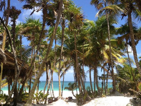 Ixchel Playa & Cabanas: vista mozzafiato