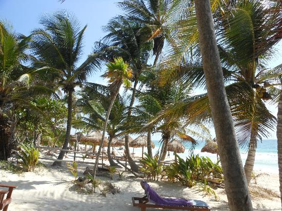 Ixchel Playa & Cabanas照片