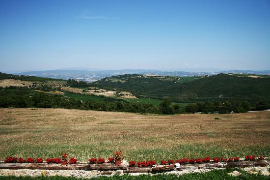 Agriturismo Santa Maria: View