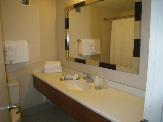 Doubletree By Hilton at the Entrance to Universal Orlando: Clean Bathroom