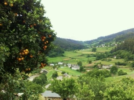 Casa La Paredana : Valle de Paredes, pueblo premio Príncipe de Asturias a 20 Km.