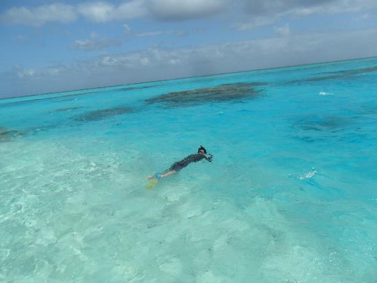 Aitutaki Adventures Lagoon Tour