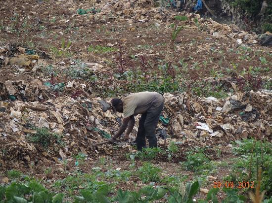 Kibera: man