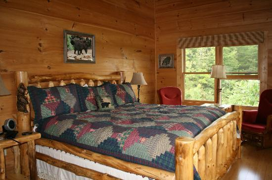 Chilhowee Mountain Retreat: Bear Room