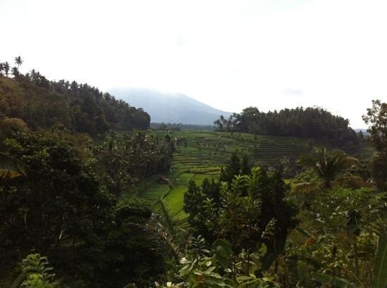 Pondok Batur Indah: Prachtig uitzicht!!