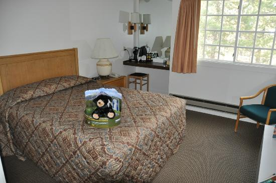 Grant Village Lodge: Bed and small desk area with coffee maker