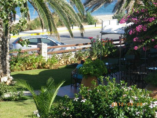 Tara Beach Hotel: View from my balcony