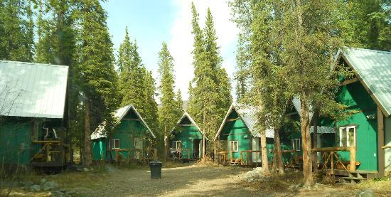The Perch Resort: cabin