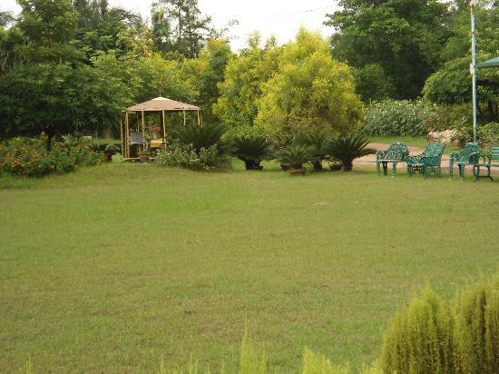 Nirala Resort: Lawn