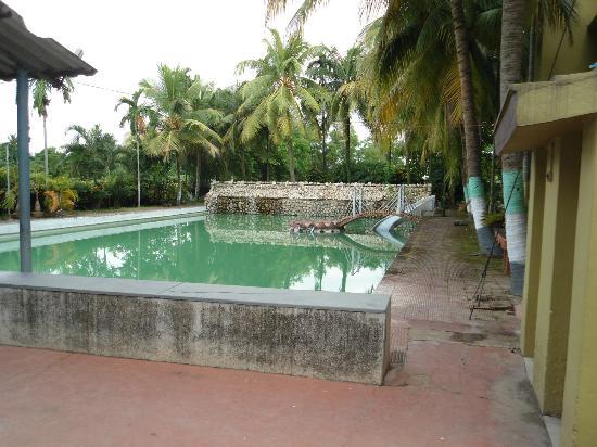 Nirala Resort: Swimming pool