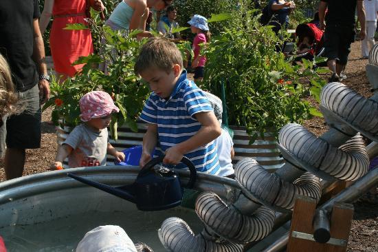 Evergreen Brick Works: Watering all the veggies