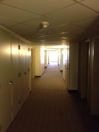 Super 8 Peterborough: second floor hallway