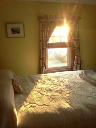 Ogunquit Beach Inn: Morning sun from Yellow room