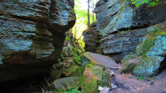 Devil's Lake State Park: Parfrey's Glen Hiking Trail
