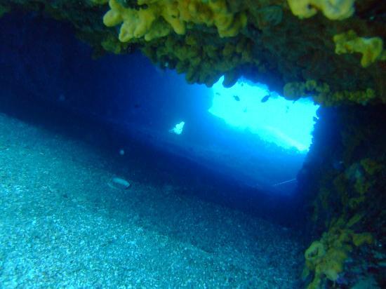 European Diving Institute - Centre de plongee en Crete: diving in Crete