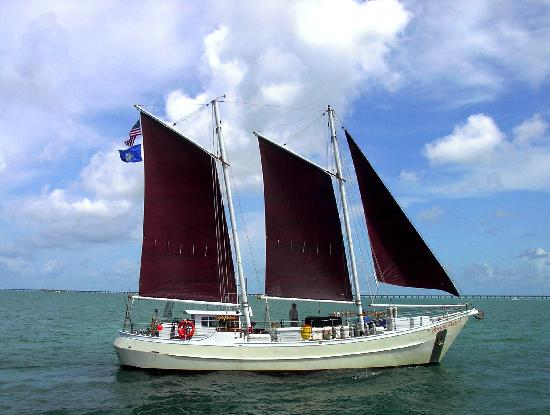 Schooner Conch Pearl Day Boat Tours Key West All You