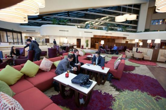 Walnut Creek Marriott : Renovated lobby - perfect for business and leisure travelers alike!