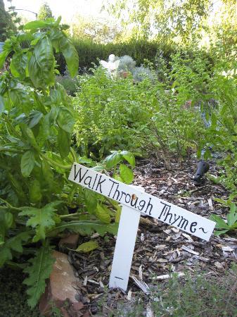 1830 Hallauer House Bed & Breakfast : Herb garden