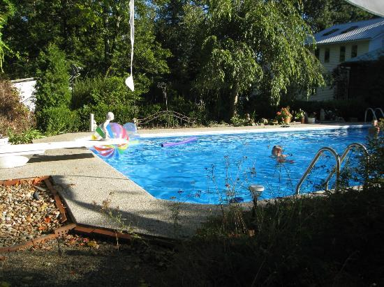 1830 Hallauer House Bed & Breakfast : Pool in use