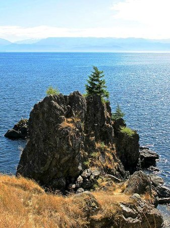East Sooke Regional Park: Remarkable views across the Straits of Jean de Fuca