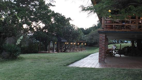 Lake Manyara Wildlife Lodge: Bar & the Viewing deck