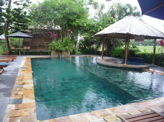 Tegal Sari: The stone based swimming pool