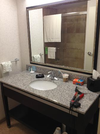 Hampton Inn & Suites by Hilton Lethbridge: Room 408