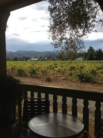 Vineyard Country Inn: Vineyard view -- beautiful!